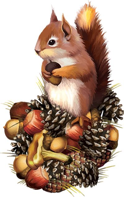 illustrations squirrel family autumn no clipart - Clipground