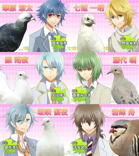 Hatoful Boyfriend - All of the Pigeons! Even Anghel and